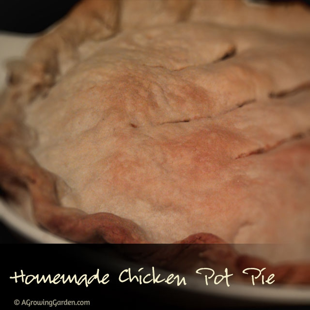 Homemade Chicken Potpie Recipe