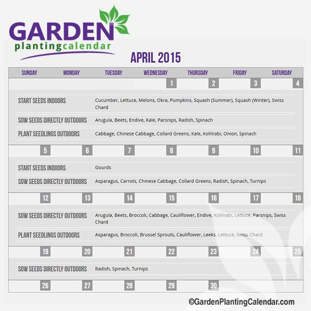 Custom Seed Starting Calendar  Planting Time Guide