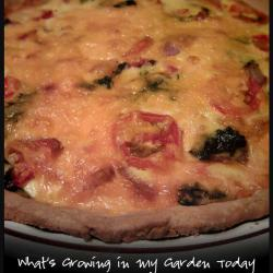 What's Growing in My Garden Today Quiche Recipe