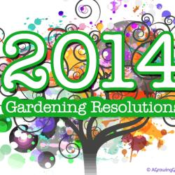 My 2014 Garden Resolutions