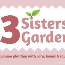 How to Plant & Grow a Three Sisters Garden